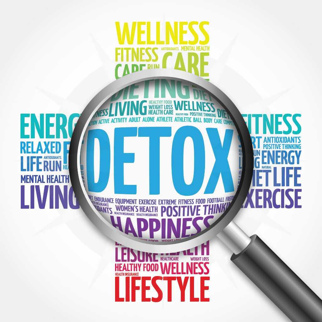 detox aufbaukuren entgiftungskuren antje willmes naturheilpraxis web50
